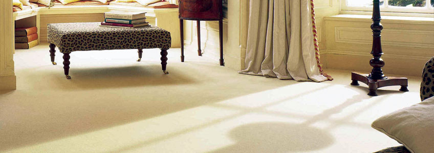 Plain Carpet Ranges